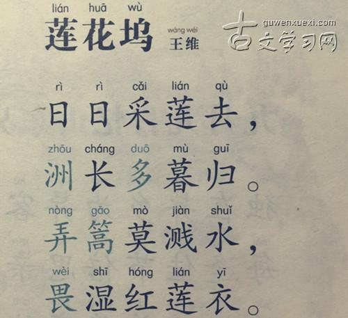 《莲花坞》王维唐诗注释翻译赏析