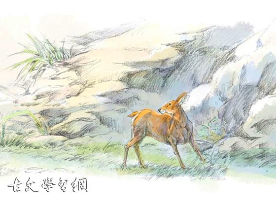 《鹿亦有知》文言文原文注释翻译